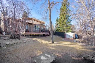 Photo 40: 6223 Dalsby Road NW in Calgary: Dalhousie Detached for sale : MLS®# A1083243