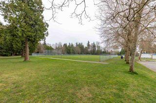 Photo 38: 12778 20 Avenue in Surrey: Crescent Bch Ocean Pk. House for sale (South Surrey White Rock)  : MLS®# R2561295