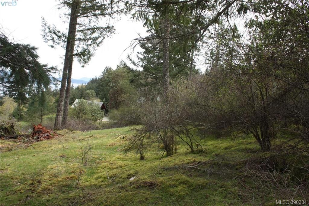 Photo 11: Photos: 414 Stewart Rd in SALT SPRING ISLAND: GI Salt Spring Land for sale (Gulf Islands)  : MLS®# 784416