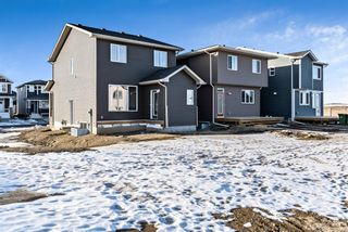 Photo 25: 163 Evanscrest Place NW in Calgary: Evanston Detached for sale : MLS®# A1065749