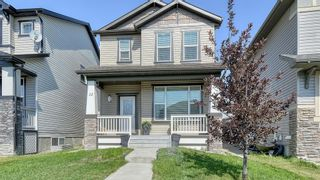 Main Photo: 12 Skyview Springs Place NE in Calgary: Skyview Ranch Detached for sale : MLS®# A1146675