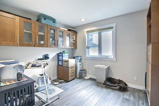 Photo 22: 737 EAST CHESTERMERE Drive: Chestermere Detached for sale : MLS®# A1109019