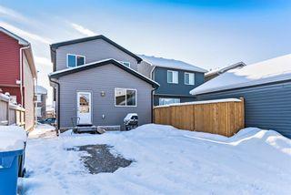 Photo 24: 44 Cranford Park SE in Calgary: Cranston Detached for sale : MLS®# A1065627
