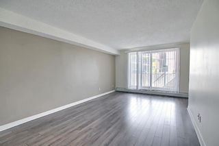 Photo 8: 102 4455A Greenview Drive NE in Calgary: Greenview Apartment for sale : MLS®# A1088042