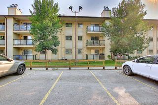 Photo 34: 3102 393 Patterson Hill SW in Calgary: Patterson Apartment for sale : MLS®# A1136424