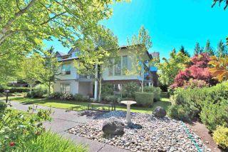 "Photo 1: 108 2167 152 Street in Surrey: Sunnyside Park Surrey Condo for sale in ""Muirfield Gardens"" (South Surrey White Rock)  : MLS®# R2588069"