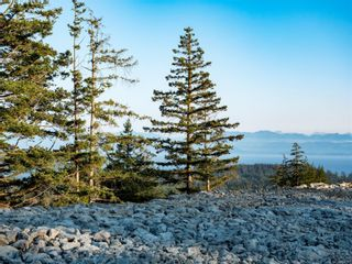 Photo 24: Proposed Lot 1 Clarkson Pl in : Sk Broomhill Land for sale (Sooke)  : MLS®# 850311