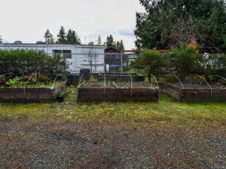 Photo 7: 440 4TH Avenue in CAMPBELL RIVER: CR Campbell River Central House for sale (Campbell River)  : MLS®# 806220