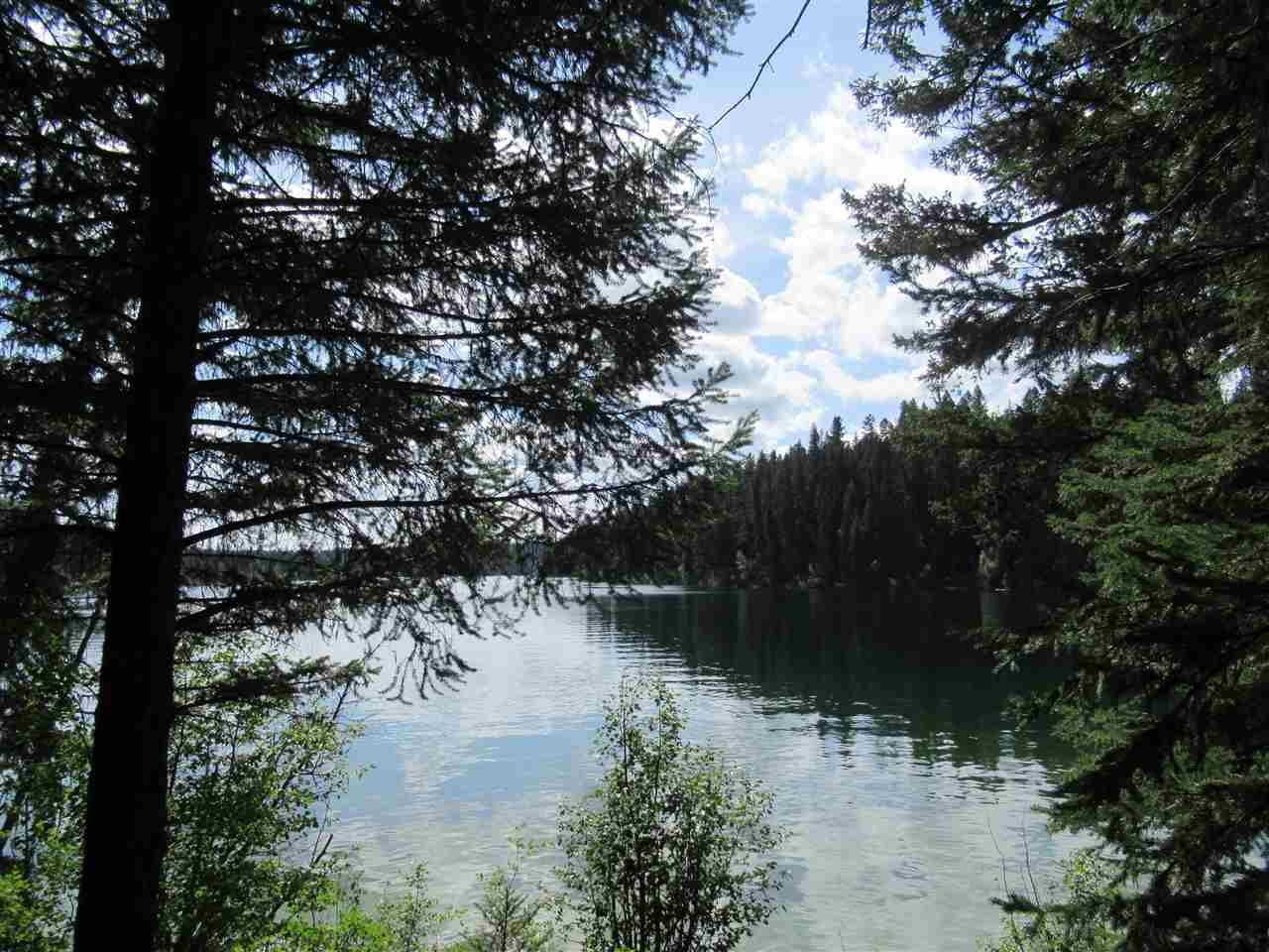 Photo 11: Photos: 2454 TYEE LAKE Road in Williams Lake: Williams Lake - Rural North House for sale (Williams Lake (Zone 27))  : MLS®# R2398466