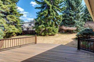 Photo 43: 49 MARLBORO Road in Edmonton: Zone 16 House for sale : MLS®# E4241038