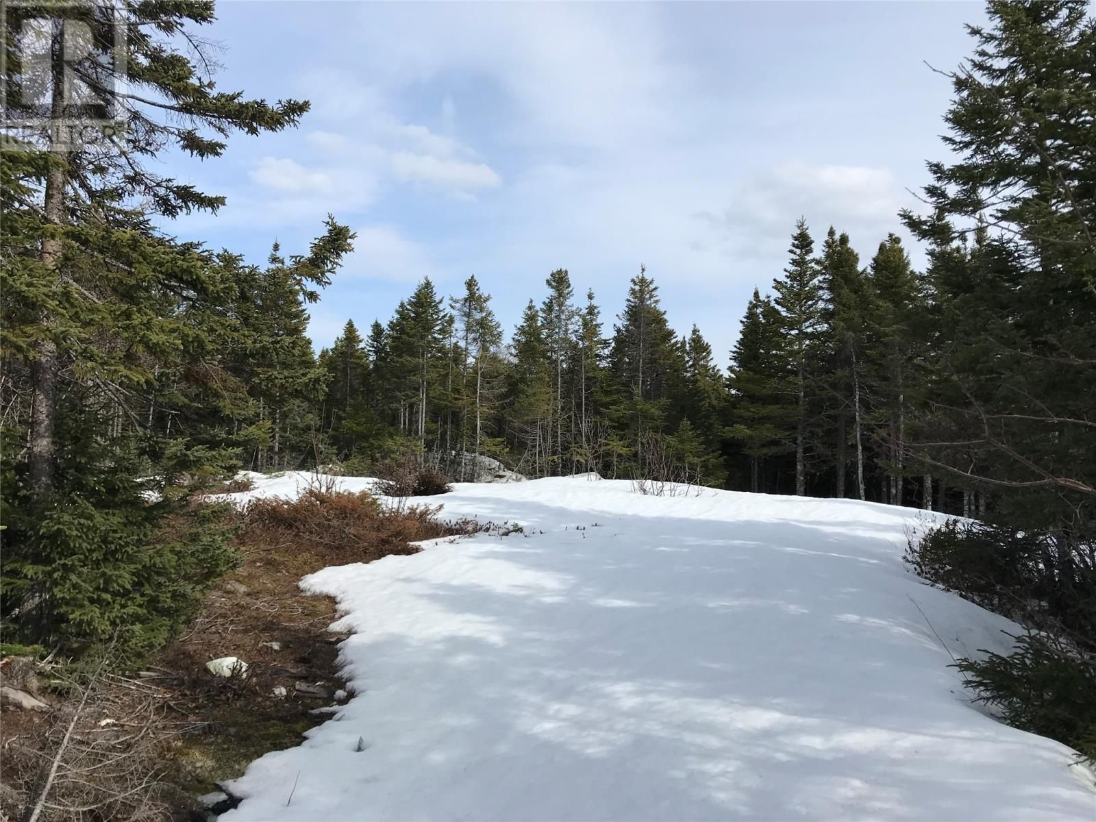 Main Photo: 0 New World Island Forestry Access Road in Summerford: Vacant Land for sale : MLS®# 1229207