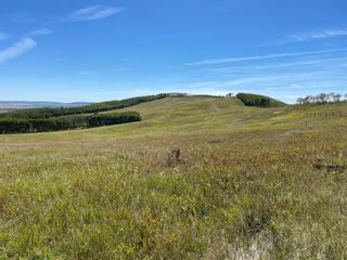 Photo 29: Highway 22: Rural Foothills County Commercial Land for sale : MLS®# A1066885