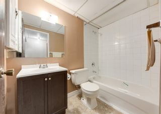 Photo 21: 228 Berwick Drive NW in Calgary: Beddington Heights Semi Detached for sale : MLS®# A1137889