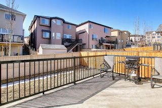 Photo 44: 1228 SHERWOOD Boulevard NW in Calgary: Sherwood Detached for sale : MLS®# A1083559