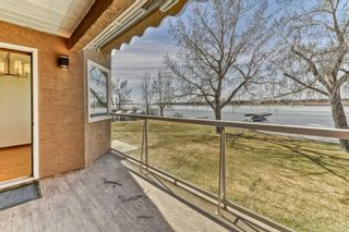 Photo 17: 119 East Chestermere Drive: Chestermere Semi Detached for sale : MLS®# A1082809