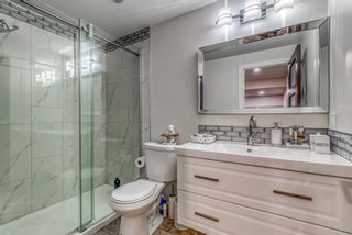 Photo 30: 262 Copperstone Circle SE in Calgary: Copperfield Detached for sale : MLS®# A1136994