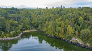 Photo 6: Lot 19 Five Point Island in South of Kenora: Vacant Land for sale : MLS®# TB212087