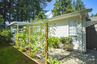 "Photo 29: 102 9080 198 Street in Langley: Walnut Grove Manufactured Home for sale in ""FOREST GREEN ESTATES"" : MLS®# R2486756"