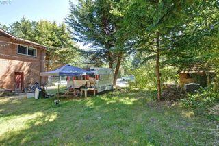 Photo 19: 1005 Bristol Rd in VICTORIA: SE Quadra House for sale (Saanich East)  : MLS®# 764399