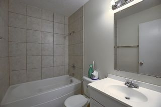 Photo 14: 451 Lysander Drive SE in Calgary: Ogden Detached for sale : MLS®# A1053955