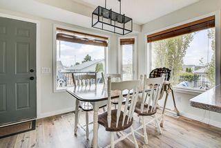 Photo 17: 22 WESTMEWS Drive: Fort Saskatchewan House for sale : MLS®# E4245512