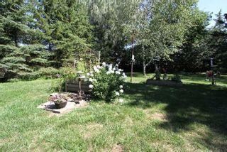 Photo 4: 50 Robinson Avenue in Kawartha Lakes: Rural Eldon House (Bungalow-Raised) for sale : MLS®# X4869770