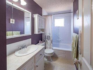 Photo 17: 223 Tanner Drive SE: Airdrie Detached for sale : MLS®# A1101335