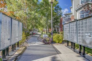 Photo 42: 3904 7171 Coach Hill Road SW in Calgary: Coach Hill Row/Townhouse for sale : MLS®# A1144923