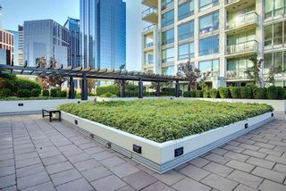 Photo 36: 817 222 Riverfront Avenue SW in Calgary: Eau Claire Apartment for sale : MLS®# A1101898