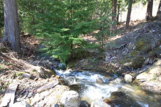 Photo 12: DL 10026 NEEDLES NORTH RD in Needles: House for sale : MLS®# 2459280