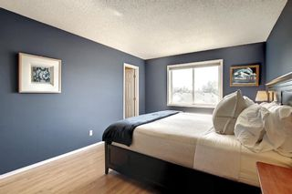 Photo 25: 690 Coventry Drive NE in Calgary: Coventry Hills Detached for sale : MLS®# A1144228