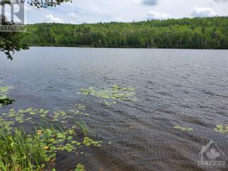 Photo 22: 2600 CLYDE LAKE ROAD in Lanark: Vacant Land for sale : MLS®# 1253879