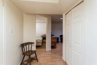Photo 39:  in Edmonton: Zone 22 House for sale : MLS®# E4254166