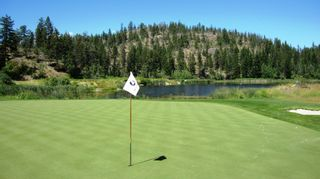 Photo 40: 155 Longspoon Drive in Vernon: Predator Ridge House for sale (North Okanagan)  : MLS®# 10173489