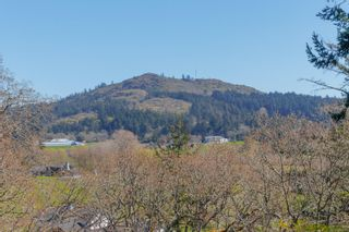 Photo 36: 899 Currandale Crt in : SE Lake Hill House for sale (Saanich East)  : MLS®# 871873