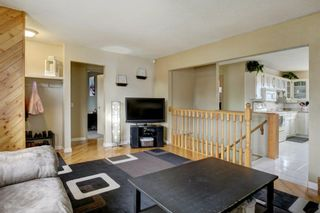 Photo 5: 3303 39 Street SE in Calgary: Dover Detached for sale : MLS®# A1084861