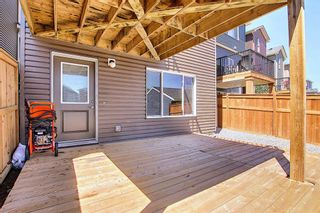 Photo 48: 26 Evanscrest Heights NW in Calgary: Evanston Detached for sale : MLS®# A1127719