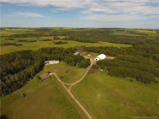 Photo 46: 41405 Range Road 231: Rural Lacombe County Detached for sale : MLS®# CA0173239