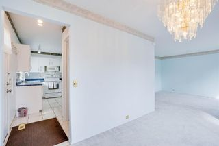 Photo 34: 3307 39 Street SE in Calgary: Dover Detached for sale : MLS®# A1148179