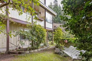 """Photo 32: 6174 EASTMONT Drive in West Vancouver: Gleneagles House for sale in """"GLENEAGLES"""" : MLS®# R2581636"""