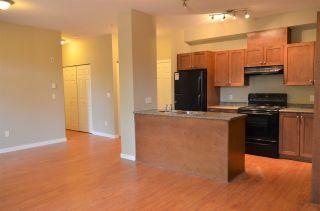"""Photo 4: 101 13277 108 Avenue in Surrey: Whalley Condo for sale in """"PACIFICA"""" (North Surrey)  : MLS®# R2154859"""