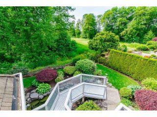 """Photo 19: 16133 MORGAN CREEK Crescent in Surrey: Morgan Creek House for sale in """"Morgan Creek"""" (South Surrey White Rock)  : MLS®# F1442523"""