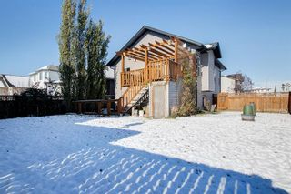 Photo 31: 19 Dallaire Drive: Carstairs Detached for sale : MLS®# A1044807