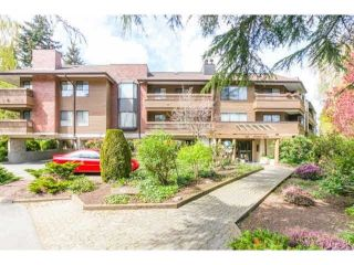 "Main Photo: 212 7411 MINORU Boulevard in Richmond: Brighouse South Condo for sale in ""WOODRIDGE ESTATES"" : MLS®# R2546062"