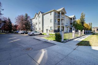 Photo 34: 205 7205 Valleyview Park SE in Calgary: Dover Apartment for sale : MLS®# A1152735