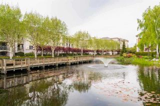 """Photo 16: 330 5500 ANDREWS Road in Richmond: Steveston South Condo for sale in """"SOUTHWATER"""" : MLS®# R2163811"""