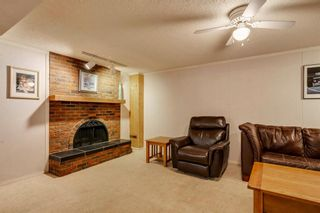 Photo 30: 712 MAPLETON Drive SE in Calgary: Maple Ridge Detached for sale : MLS®# A1018735