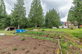 Photo 6: 13464 BURNS Road in Mission: Durieu House for sale : MLS®# R2580722