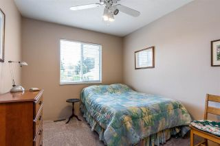 Photo 14: 22937 123B Avenue in Maple Ridge: East Central House for sale : MLS®# R2578991