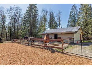 """Photo 31: 30886 DEWDNEY TRUNK Road in Mission: Stave Falls House for sale in """"Stave Falls"""" : MLS®# R2564270"""